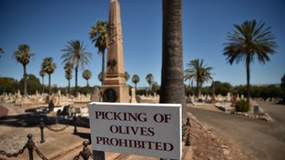 Návštěvníci hřbitova West Terrace si mohou zakoupit olivový olej lisovaných z oliv, které zrají mezi náhrobky