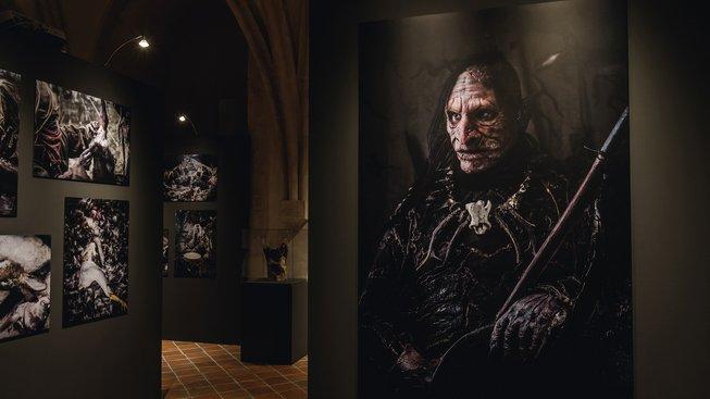 Výstava Jeden kmen v brněnském Špilberku