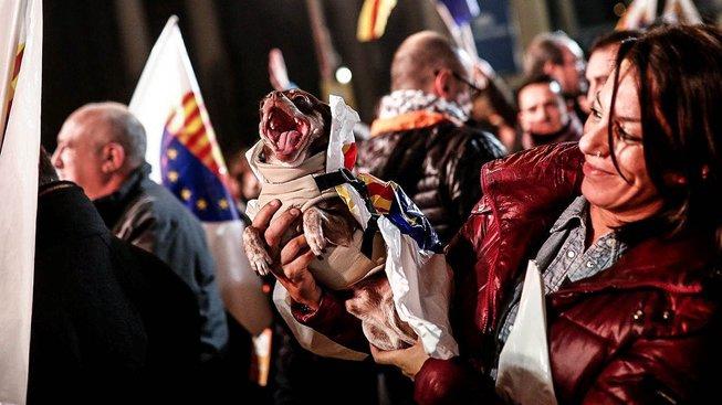 Příznivci separatistů slaví