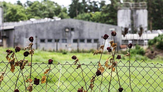 Vepřín stojící na území bývalého tábora se stát rozhodl odkoupit za 450 milionů korun.