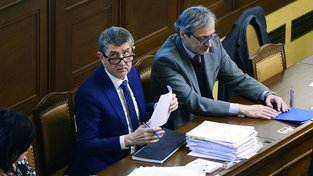 Premiér v demisi Andrej Babiš a ministr zahraničí v demisi Martin Stropnický
