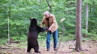 Ben Kilham zasvětil život medvědům