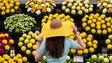 Terapie přírodou: Speciální zahrada pomáhá těžce nemocným ženám