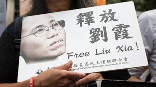 Demonstrace požadující propuštění básnířky