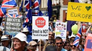 Velká řada Britů s brexitem, nebo jeho navrhovanou podobou nesouhlasí