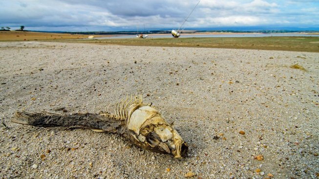 Kapské město trpí strašným suchem