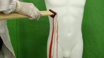 Turínské plátno očima kriminologie