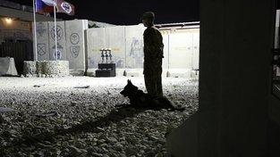 Voják se psem hlídkující na základně v Bagrámu u pietního místa na počest padlých vojáků