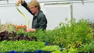 Zelinář Chris Kilner pěstuje zmenšeniny rostlin, mikrovýhonky pak prodává šéfkuchařům