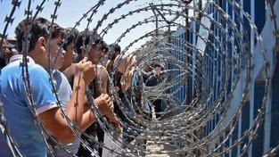 Česko jedná o příchodu padesáti sirotků ze Sýrie
