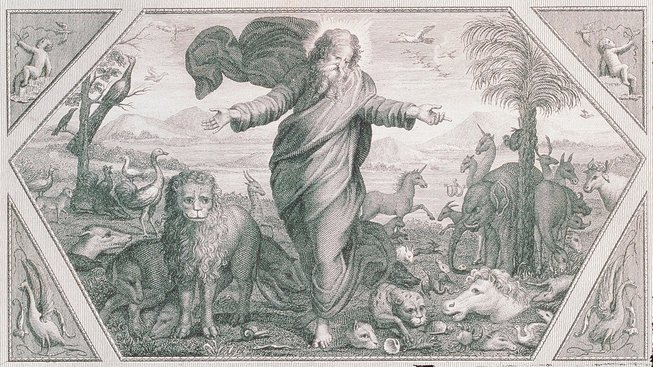 Bůh tvořící zvířata a rostliny