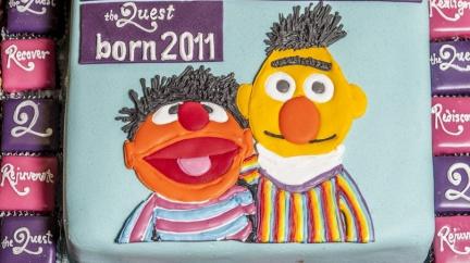 Jsou Bert a Ernie jen spolubydlící, nebo rovnou milenci?