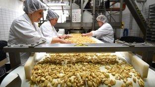 Španělsko počítá s tím, že letos sklidí více než 61 160 tun mandlí. Ilustrační snímek