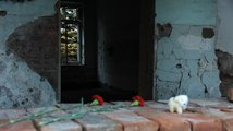 Beslan – jizva na tváři Ruska