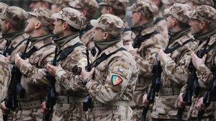 Čeští vojáci se v současné době účastní několika výcvikových nebo pozorovacích misí. Největší zastoupení má armáda v Afghánistánu, kde bylo k začátku listopadu necelých 350 vojáků.