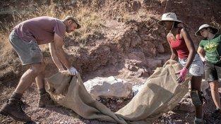 Jihoafrická republika je rájem pro lovce dinosaurů. V Rosendalu paleontologové nalezli zkameněliny plaza vyhynulého před 200 miliony lety