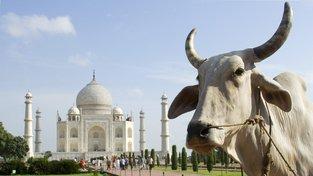 Tádž Mahal nyní stojí ve městě Ágra, indická vláda to však chce ještě do voleb změnit