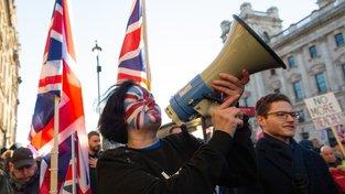 Z nedělní demonstrace v Londýně.