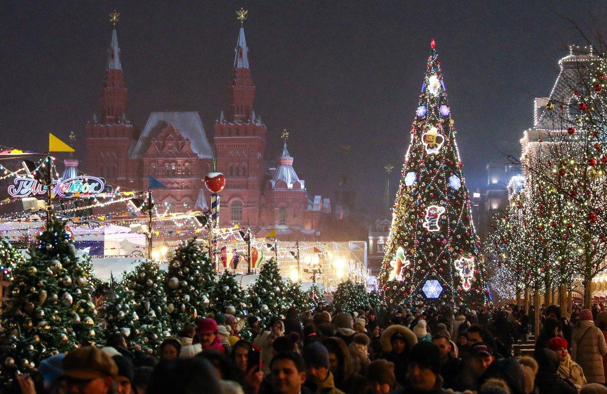 Vánoční stromy
