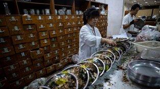 Příprava léčivých přípravků v lékárně specializované na čínskou medicínu
