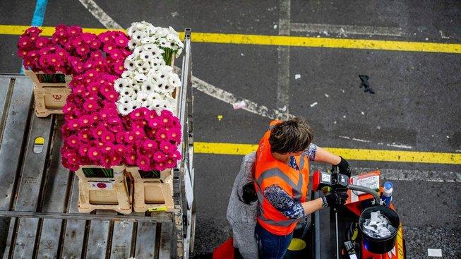 Květinová burza v Aalsmeeru