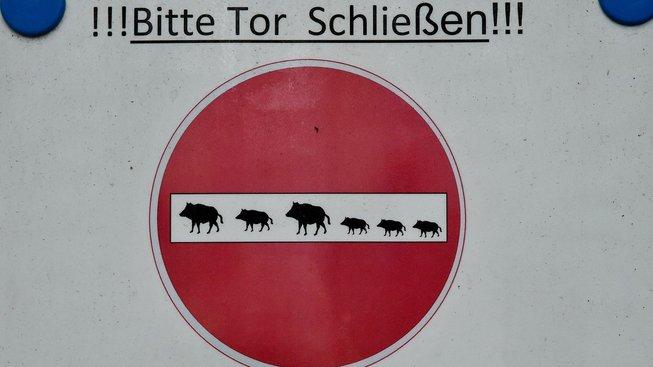 Zavírejte bránu kvůli divočákům, nabádá cedule návštěvníky stahnsdorfského hřbitova