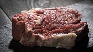 Ve stovkách kilogramů masa z Polska byla salmonela...