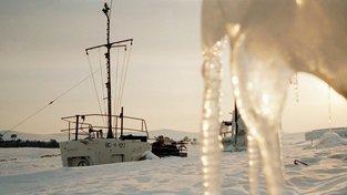 Bílý sníh na Sibiři už není samozřejmostí