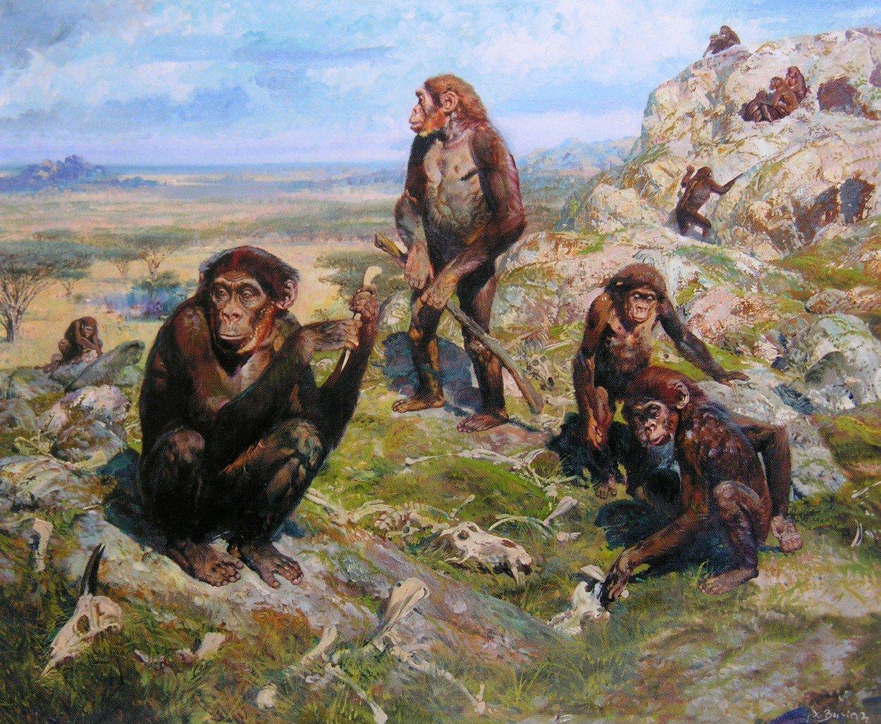 Ukázka díla Zdeňka Buriana