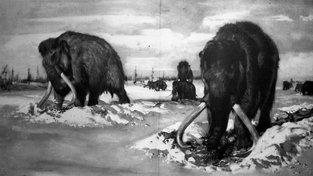 Oblíbeným tématem Zdeňka Buriana byli mamuti