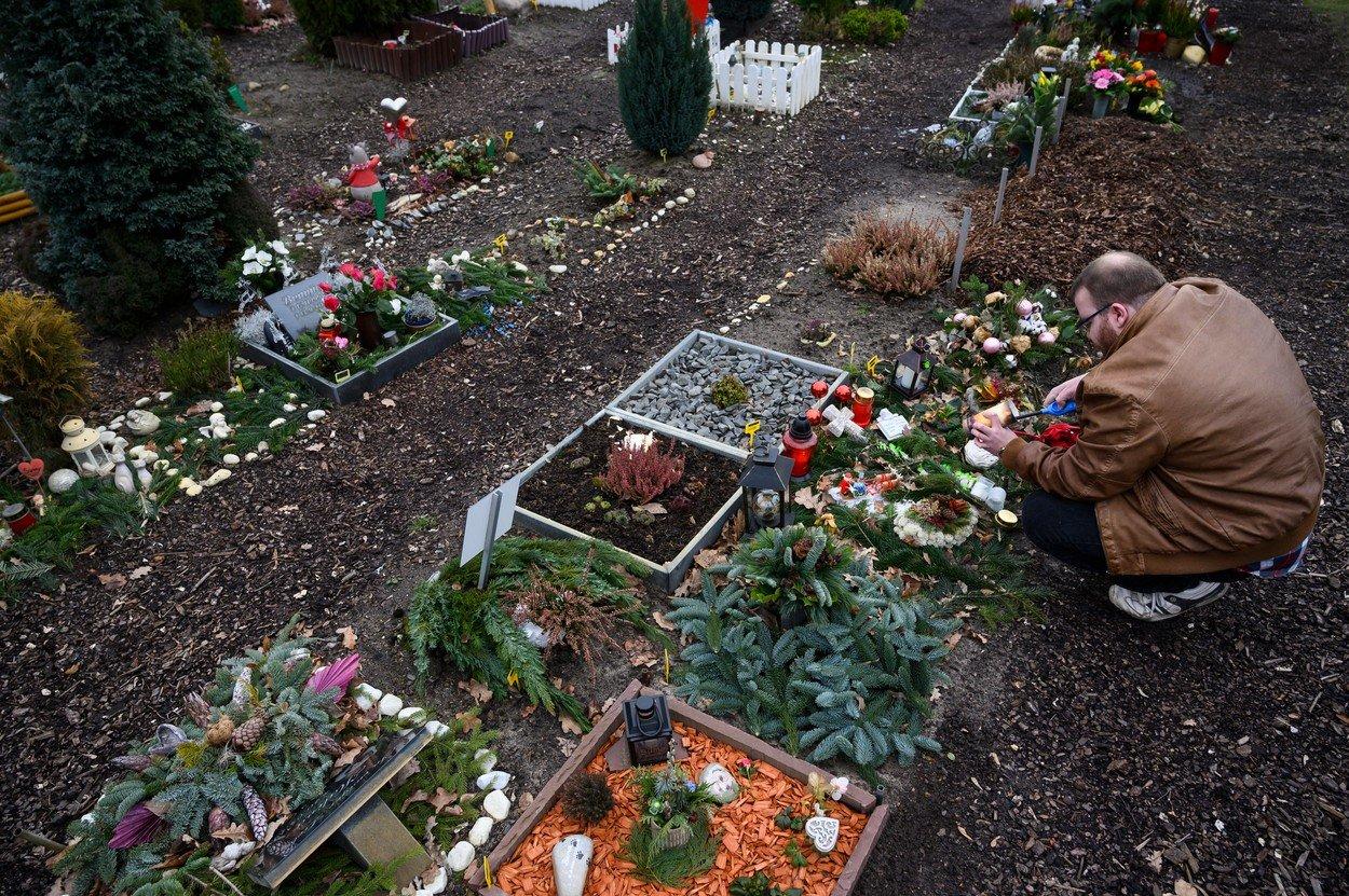 Zvířecí hřbitov