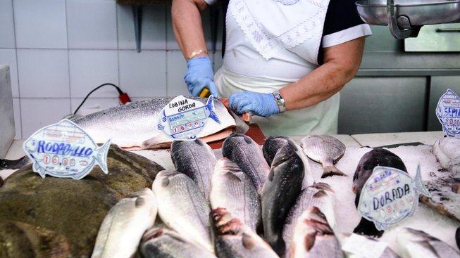 Mořský ryby jsou zdravé a zasytí. Ilustrační snímek