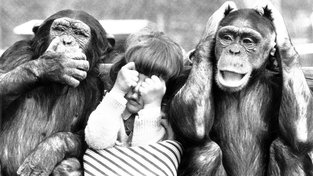 U všech banánů, takové dotace by opice nevymyslely!