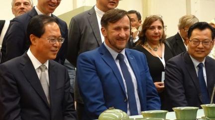 Čínská výstava v Plzni: politický poprask, strach a slzy kvůli tibetské vlajce