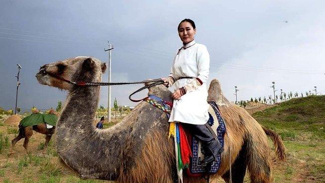 Baigalmaa Norjmaová se vydala na velbloudech z Ulánbátaru do Londýna