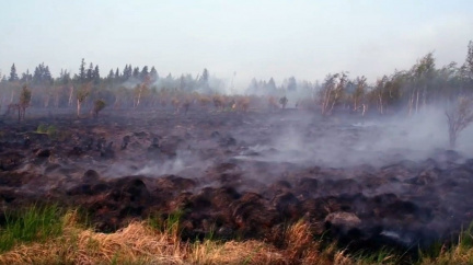 Požáry v Rusku požírají lesy, dusí lidi a ovlivňují globální klima