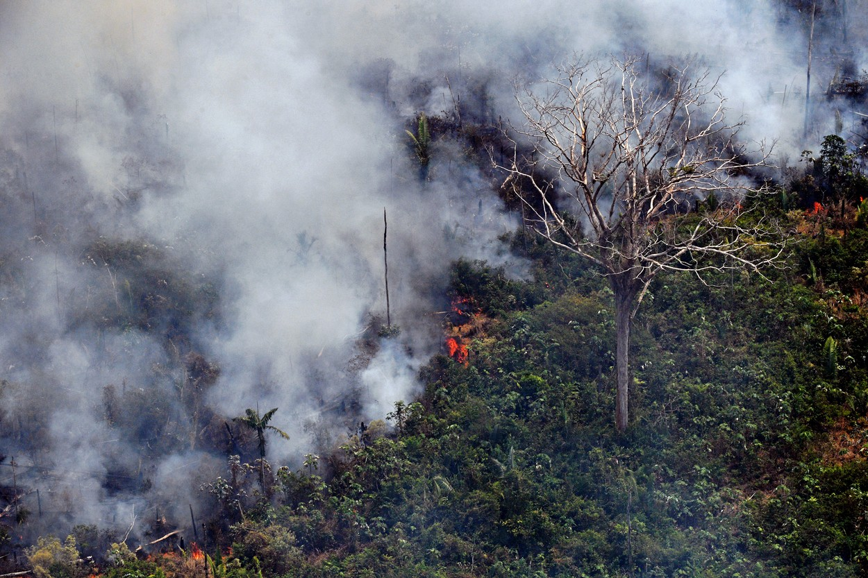 Amazonie v plamenech