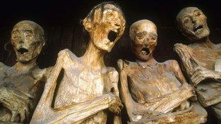 Na snímku přirozeně mumifikované ostatky z Mexika. Jde o lidi pohřbené během epidemie cholery v první půlce 19. století. Během ní se často pohřbívalo zaživa omylem