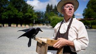 Christophe Gaborit v parku Le Puy du Fou s cvičenou vránou sbírající vajgly