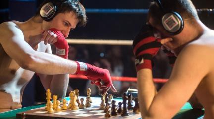 Co mají šachy společného s boxem?