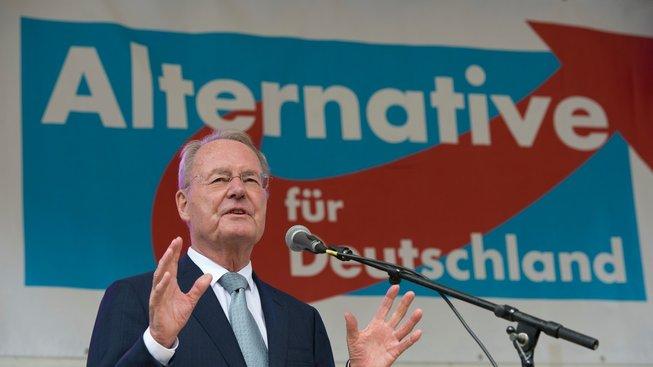 Hans-Olaf Henkel jako kandidát AfD do europarlamentu v roce 2014
