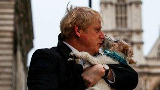 Boris Johnson a jeho pes Dilyn, se kterým premiér volil