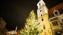 Vánoční stromy ve velkoměstech