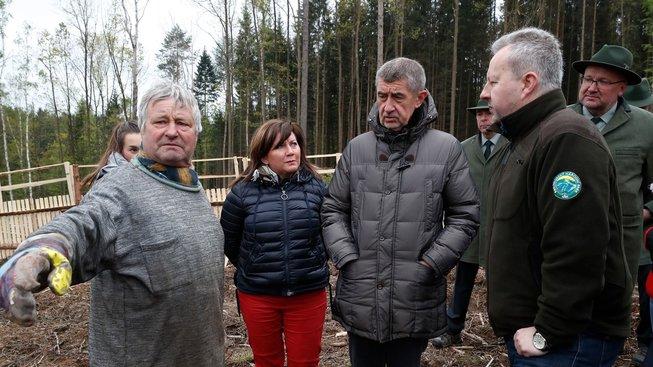 Andrej Babiš a další ministři si prohlížejí kůrovce
