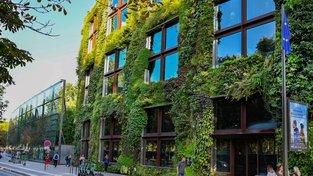 Zahrada zdobící fasádu pařížského muzea Musée du quai Branly