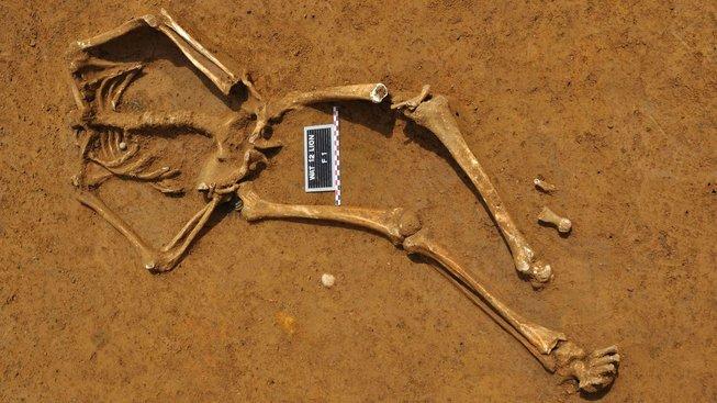 Kostra vojáka padlého u Waterloo, nalezená v roce 2012