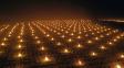 OBRAZEM: Aby vinicím nebyla zima, zahřívají je v noci stovky svíček