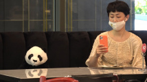 Pandí restaurace