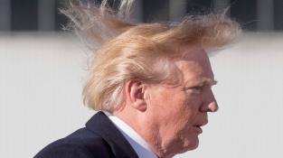 Donaldovy perfektní vlasy