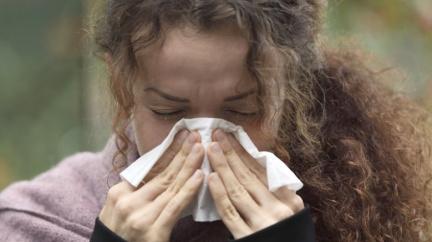 Chřipková epidemie tentokrát může Česko minout